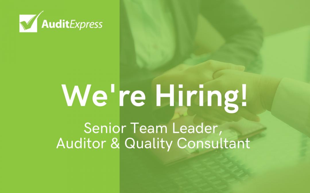Senior Team Leader, Auditor & Quality Consultant Role